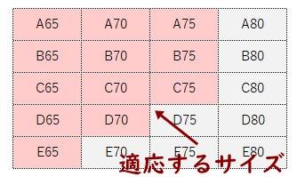 モテフィットの適応サイズ表
