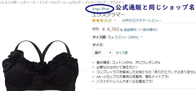 Amazonでのエクスグラマー販売画像