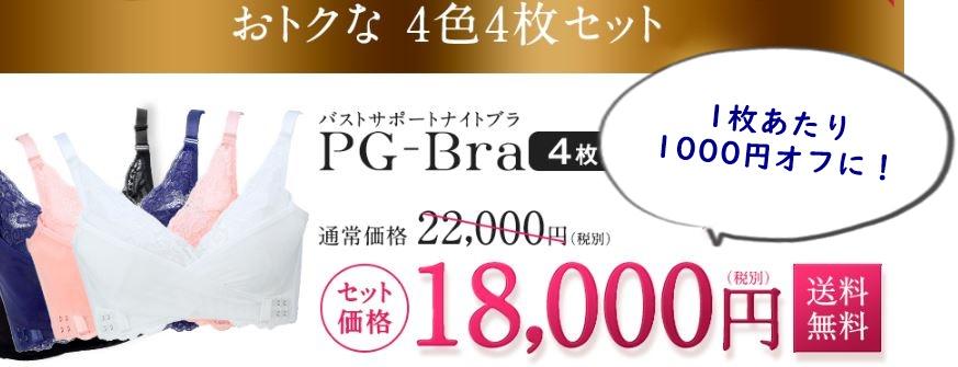 PGブラ4枚セットの価格